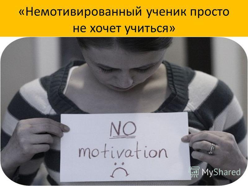 «Немотивированный ученик просто не хочет учиться»