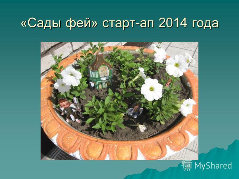 «Сады фей» старт-ап 2014 года
