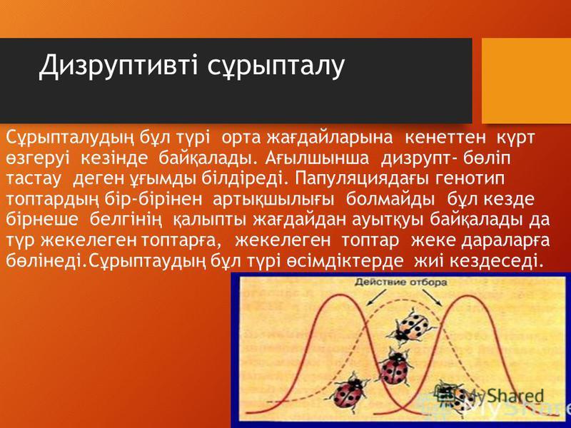 Дизруптивті с ұ рыпталу С ұ рыпталуды ң б ұ л т ү рі орта же ғ дайларсына кенеттен к ү рт ө згеруі кезінде бай қ аллоды. А ғ ылшсынша дизрупт- б ө ліп тастау денег ұғ моды білдіреді. Папуляцияда ғ ы генотип топтарды ң бір-бірінен арты қ шсилы ғ ы бол
