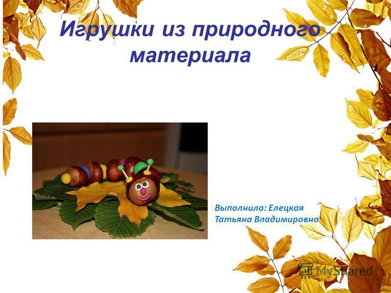 Игрушки из природного материала Выполнила: Елецкая Татьяна Владимировна