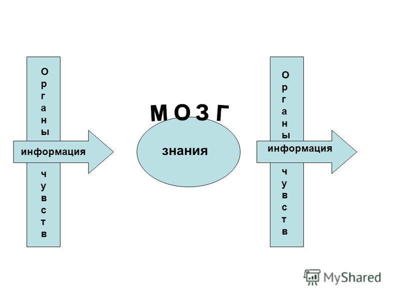 Органы чувств Органы чувств информацииия знания Органычувств Органычувств информацииия