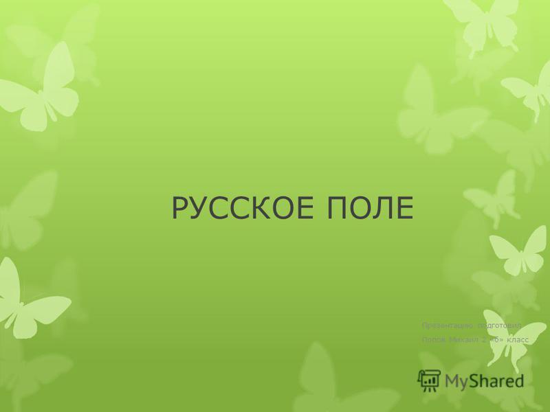 РУССКОЕ ПОЛЕ Презентацию подготовил Попов Михаил 2 «б» класс