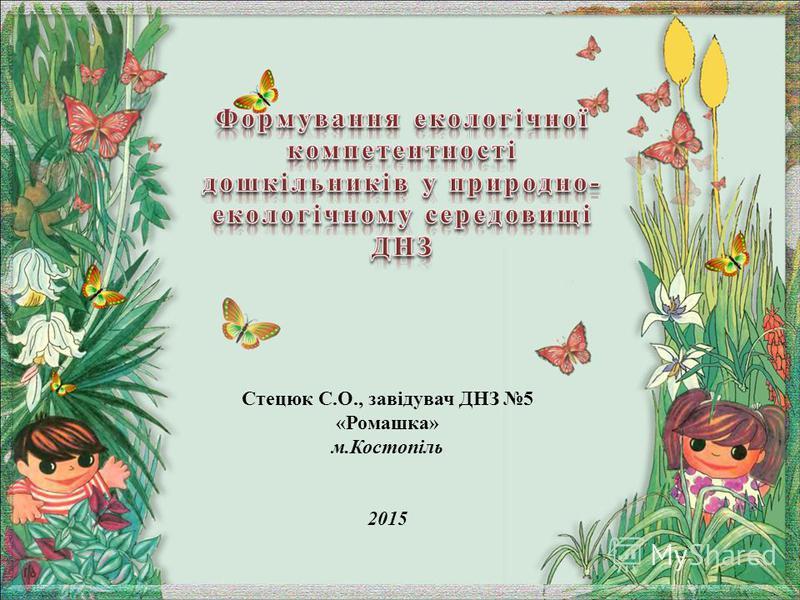 Стецюк С.О., завідувач ДНЗ 5 «Ромашка» м.Костопіль 2015