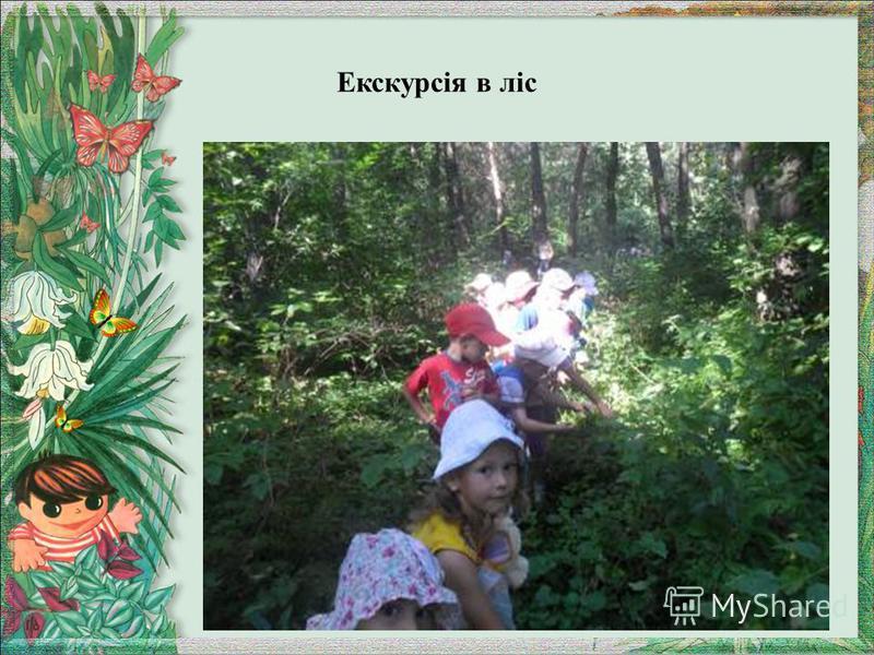 Екскурсія в ліс