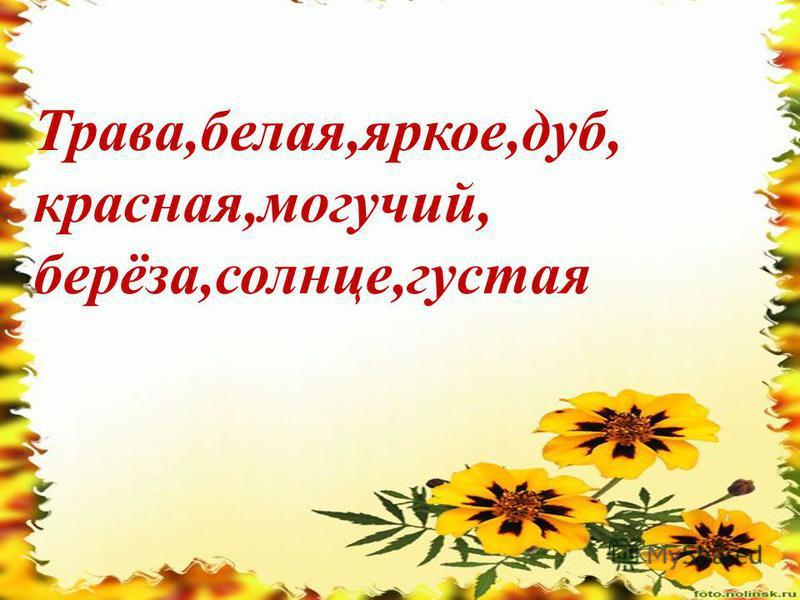 Ттттттт Трава,белая,яркое,дуб, красная,могучий, берёза,солнце,густая