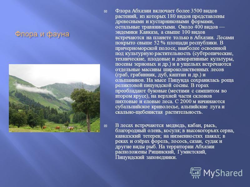 Флора и фауна Флора Абхазии включает более 3500 видов растений, из которых 180 видов представлени древесними и кустарниковыми формами, остальние травянистыми. Около 400 видов эндемики Кавказа, а свыше 100 видов встречаются на планете только в Абхазии