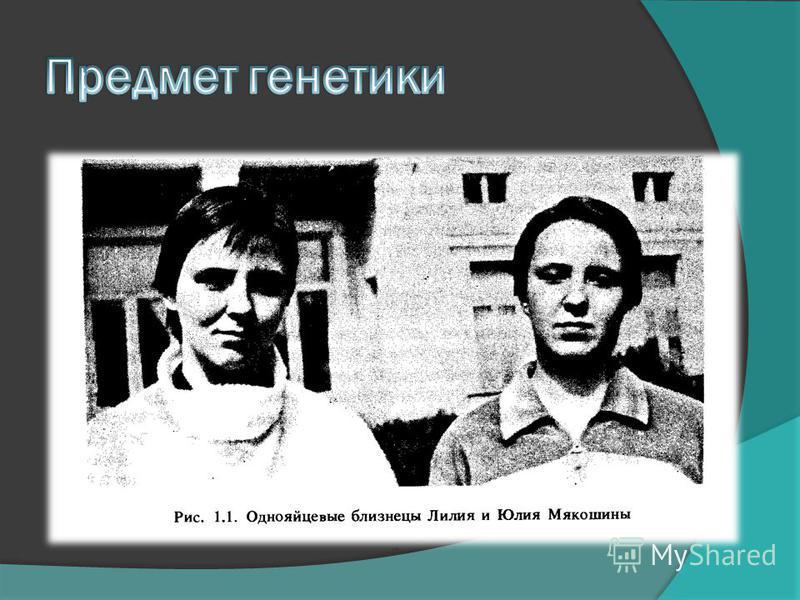 Работу выполнили Кузнецова Екатерина Соколова Светлана
