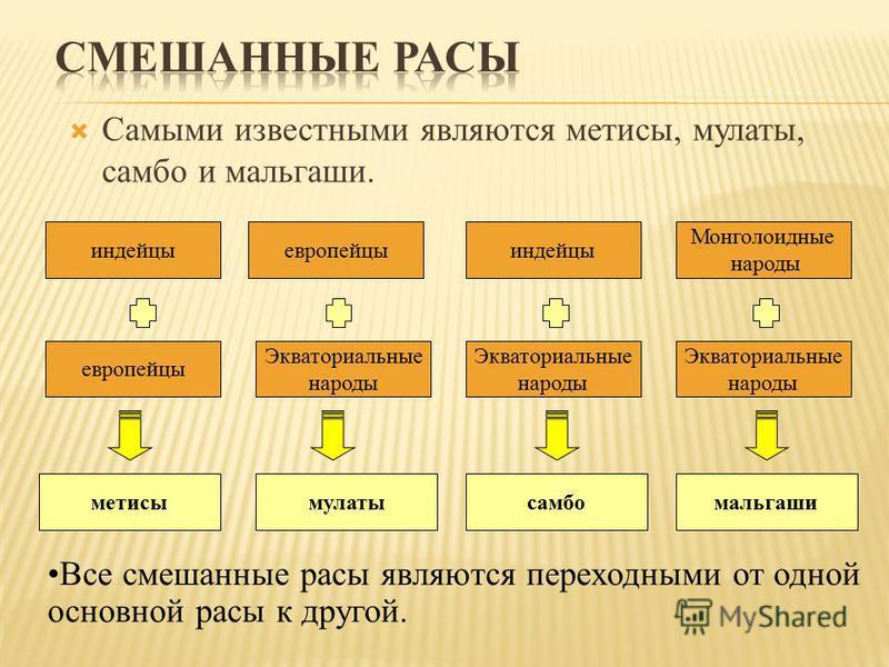 Самыми известными являются метисы, мулаты, самбо и мальгаши. европейцы индейцы Экваториальные народы Монголоидные народы метисымулатымальгаши европейцы индейцы Экваториальные народы Экваториальные народы самбо Все смешанные расы являются переходными