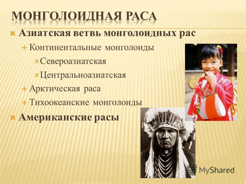 Азиатская ветвь монголоидных рас Континентальные монголоиды Североазиатская Центральноазиатская Арктическая раса Тихоокеанские монголоиды Американские расы