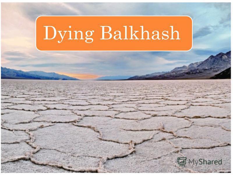 Dying Balkhash