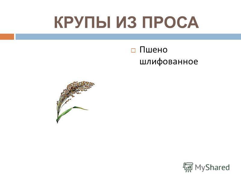 КРУПЫ ИЗ ПРОСА Пшено шлифованное