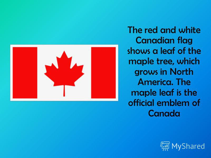 The red and white Canadian flag shows a leaf of the maple tree, which grows in North America. The maple leaf is the official emblem of Canada