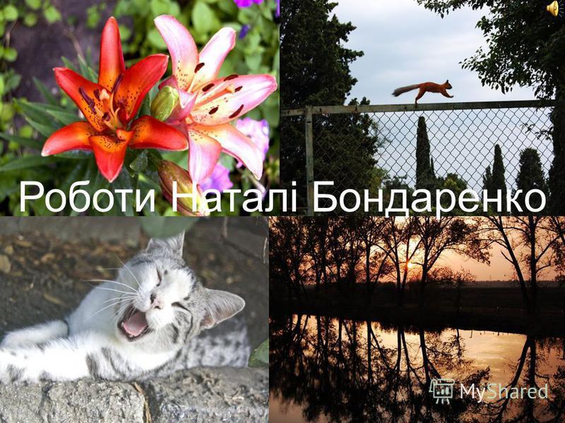 Роботы Наталі Бондаренко