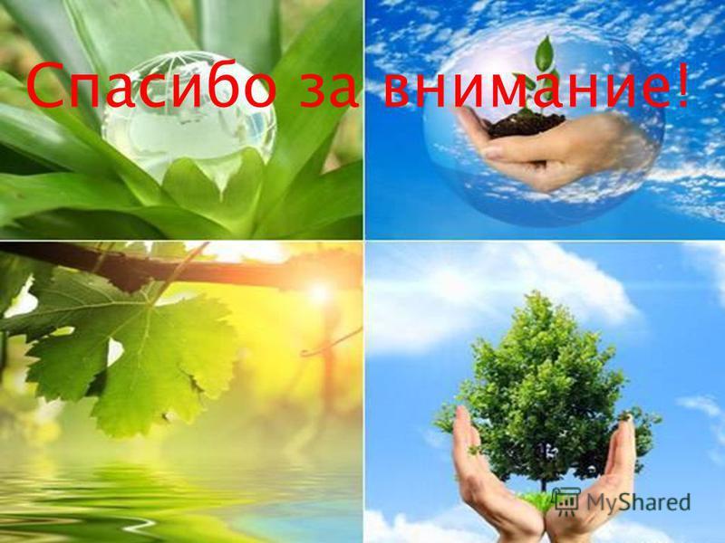 Природу надо беречь! Всё в наших руках!