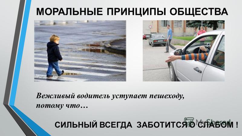 МОРАЛЬНЫЕ ПРИНЦИПЫ ОБЩЕСТВА Вежливый водитель уступает пешеходу, потому что… СИЛЬНЫЙ ВСЕГДА ЗАБОТИТСЯ О СЛАБОМ !