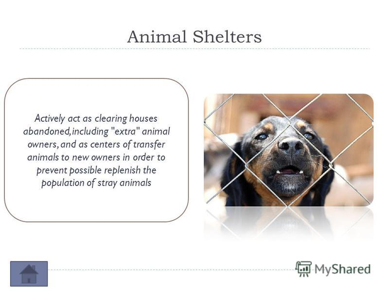 Animal Shelters Actively act as clearing houses abandoned, including extra animal owners, and as centers of transfer animals to new owners in order to prevent possible replenish the population of stray animals