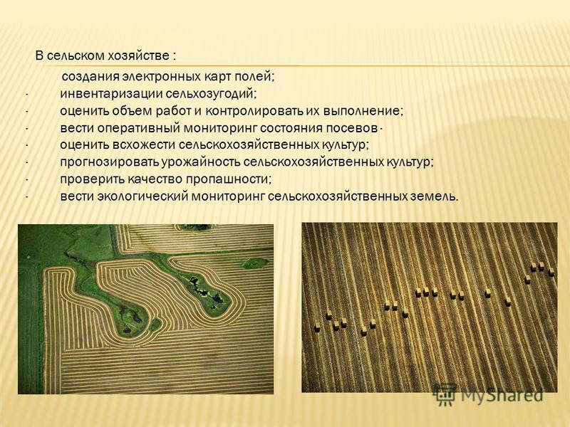 В сельском хозяйстве : создания электронных карт полей; · инвентаризации сельхозугодий; · оценить объем работ и контролировать их выполнение; · вести оперативный мониторинг состояния посевов · · оценить всхожести сельскохозяйственных культур; · прогн