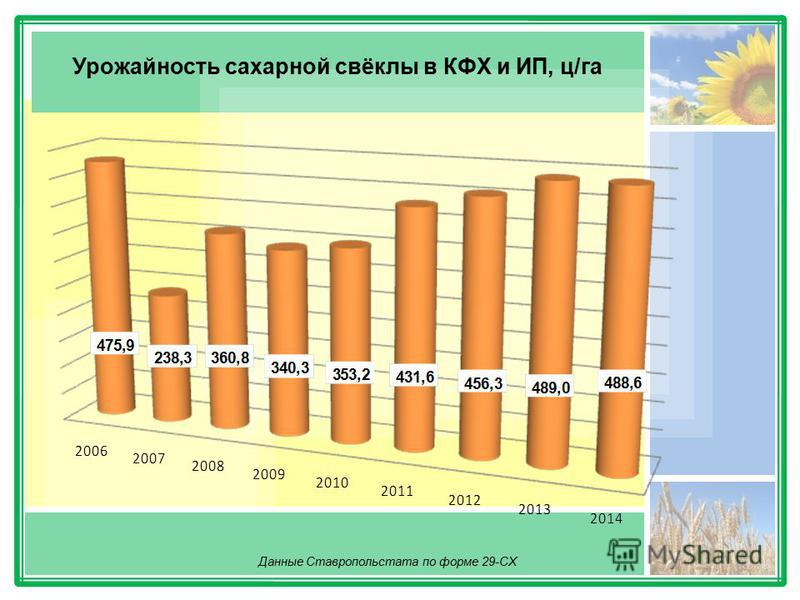 Урожайность сахарной свёклы в КФХ и ИП, ц/га Данные Ставропольстата по форме 29-СХ