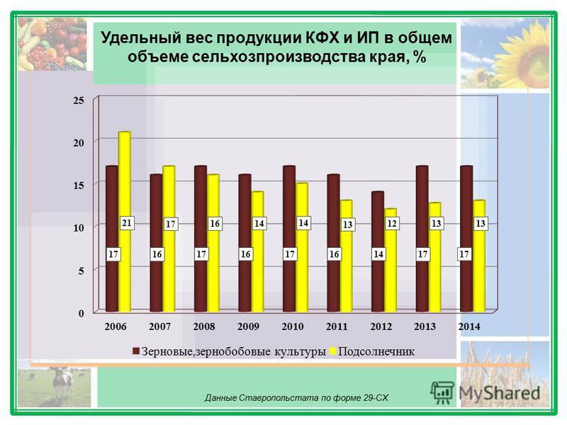 Удельный вес продукции КФХ и ИП в общем объеме сельхозпроизводства края, % Данные Ставропольстата по форме 29-СХ