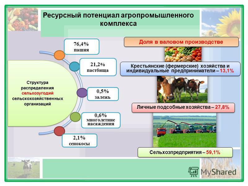 Ресурсный потенциал агропромышленного комплекса Доля в валовом производстве Крестьянские (фермерские) хозяйства и индивидуальные предприниматели – 13,1% Личные подсобные хозяйства – 27,8% Сельхозпредприятия – 59,1% Структура распределения сельхозугод