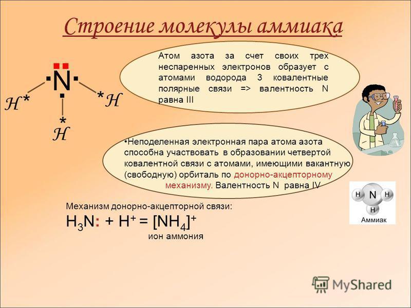 Строение молекулы аммиака Н * * *Н*Н Н N Атом азота за счет своих трех неспаренных электронов образует с атомами водорода 3 ковалентные полярные связи => валентность N равна ІІІ Неподеленная электронная пара атома азота способна участвовать в образов
