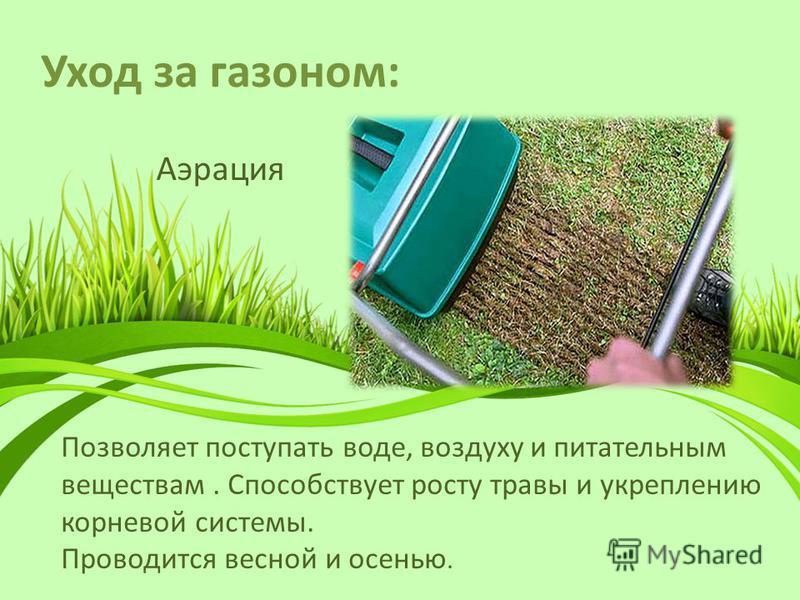 Уход за газоном: Аэрация Позволяет поступать воде, воздуху и питательным веществам. Способствует росту травы и укреплению корневой системы. Проводится весной и осенью.