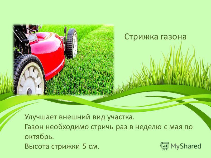 Стрижка газона Улучшает внешний вид участка. Газон необходимо стричь раз в неделю с мая по октябрь. Высота стрижки 5 см.
