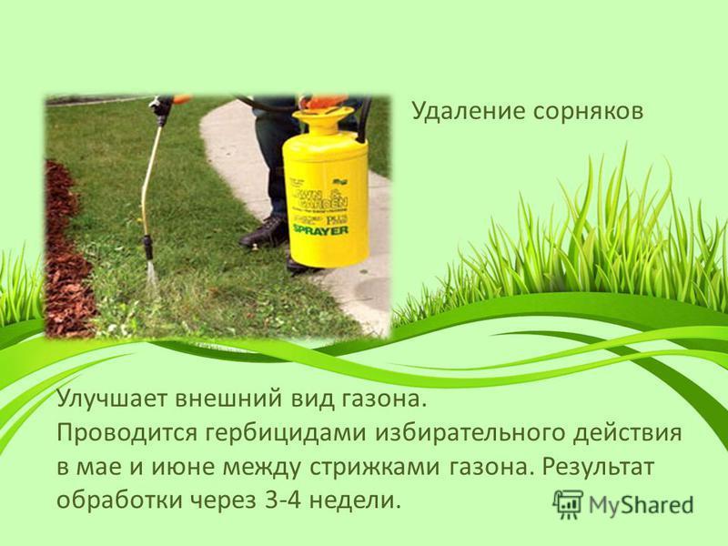 Удаление сорняков Улучшает внешний вид газона. Проводится гербицидами избирательного действия в мае и июне между стрижками газона. Результат обработки через 3-4 недели.