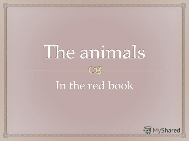 In the red book