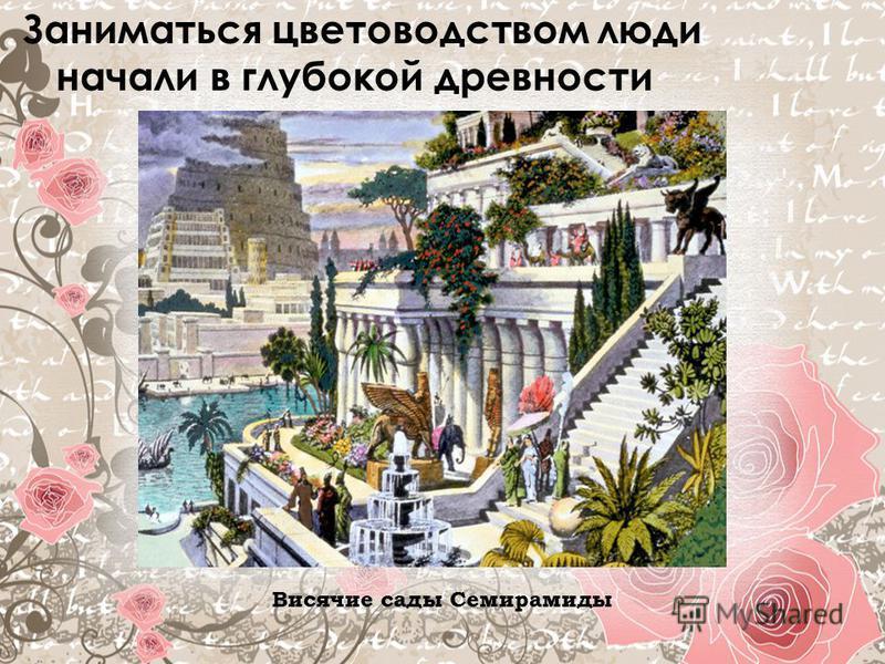 Заниматься цветоводством люди начали в глубокой древности Висячие сады Семирамиды