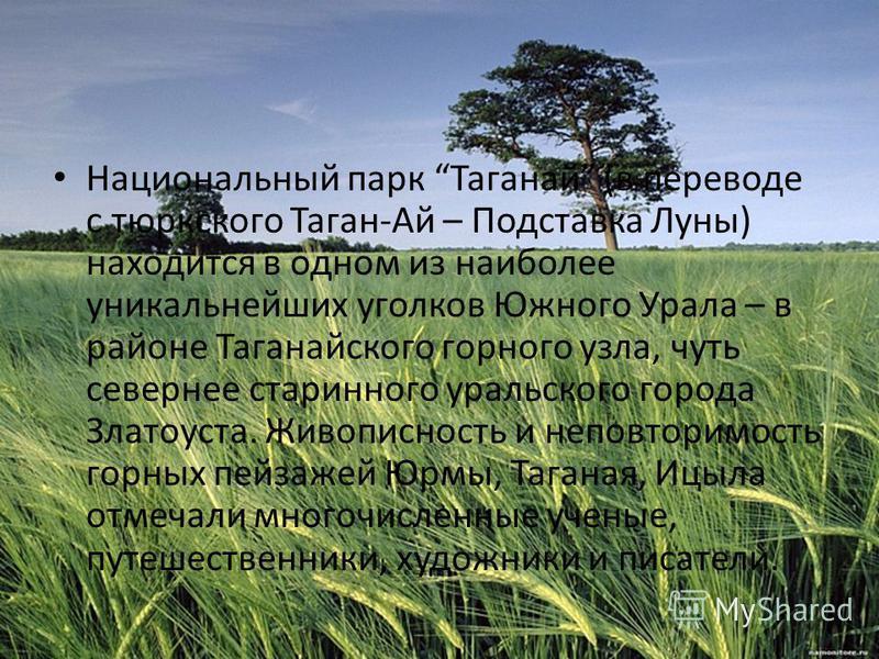 Национальный парк Таганай (в переводе с тюркского Таган-Ай – Подставка Луны) находится в одном из наиболее уникальнейших уголков Южного Урала – в районе Таганайского горного узла, чуть севернее старинного уральского города Златоуста. Живописность и н