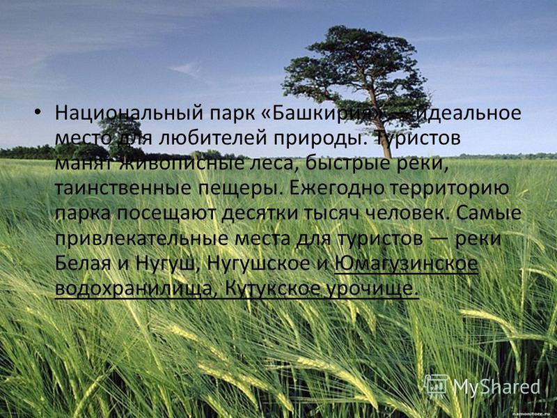 Национальный парк «Башкирия» идеальное место для любителей природы. Туристов манят живописные леса, быстрые реки, таинственные пещеры. Ежегодно территорию парка посещают десятки тысяч человек. Самые привлекательные места для туристов реки Белая и Нуг