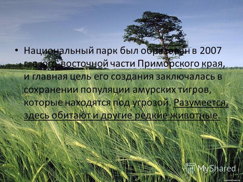 Национальный парк был образован в 2007 г. в юго-восточной части Приморского края, и главная цель его создания заключалась в сохранении популяции амурских тигров, которые находятся под угрозой. Разумеется, здесь обитают и другие редкие животные.