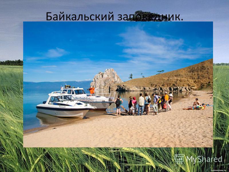 Байкальский заповедник.