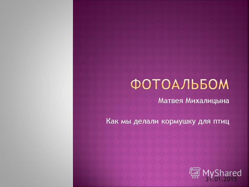Матвея Михалицына Как мы делали кормушку для птиц 31.01.2015