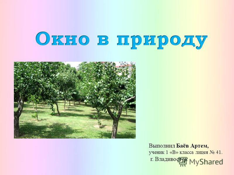 Выполнил Баёв Артем, ученик 1 «В» класса лицея 41. г. Владивосток
