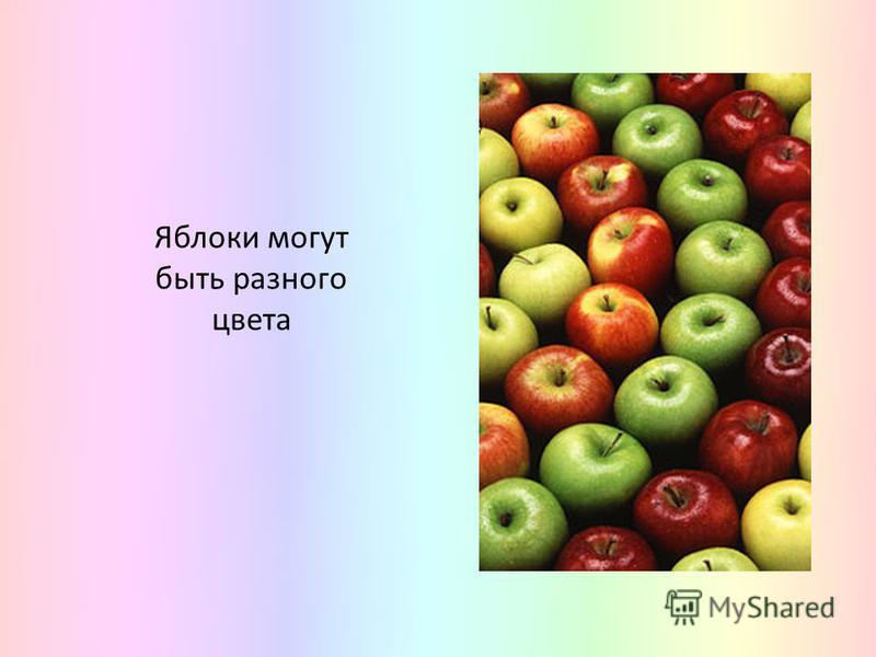Яблоки могут быть разного цвета