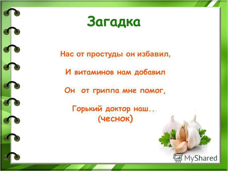 Как я вырастил чеснок исследовательская работа ученика 1 «в» класса Михалицына Матвея «Лицей 41» г. Владивосток