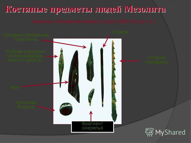 Костяные предметы людей Мезолита Замостье, Московская область (около 8000 лет до н.э.) Орнаментированная пластинка Рыбная распорка (использовалась вместо крючка) Нож Костяная бляшка Стрела Острога (половина) Фрагмент ожерелья