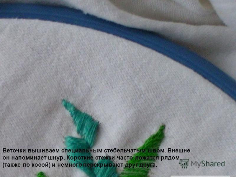 Веточки вышиваем специальным стебельчатым швом. Внешне он напоминает шнур. Короткие стежки часто ложатся рядом (также по косой) и немного перекрывают друг друга.