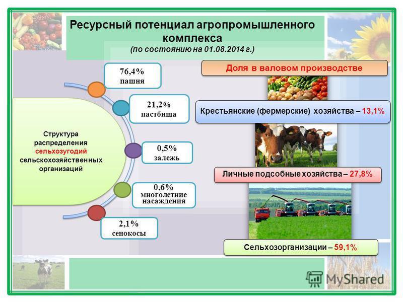 Ресурсный потенциал агропромышленного комплекса (по состоянию на 01.08.2014 г.) Доля в валовом производстве Крестьянские (фермерские) хозяйства – 13,1% Личные подсобные хозяйства – 27,8% Сельхозорганизации – 59,1% Структура распределения сельхозугоди
