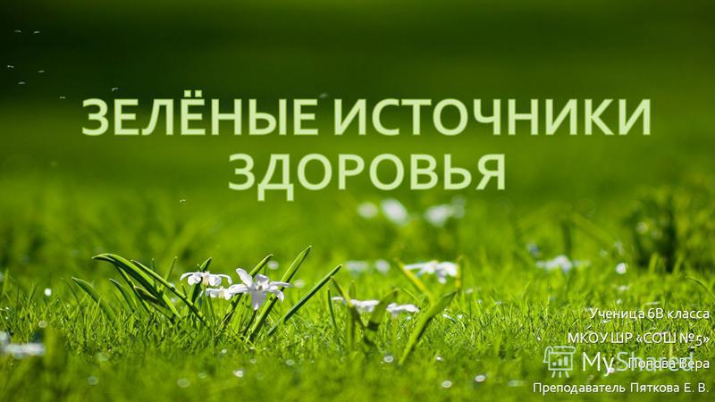Ученица 6В класса МКОУ ШР «СОШ 5» Попова Вера Преподаватель Пяткова Е. В.