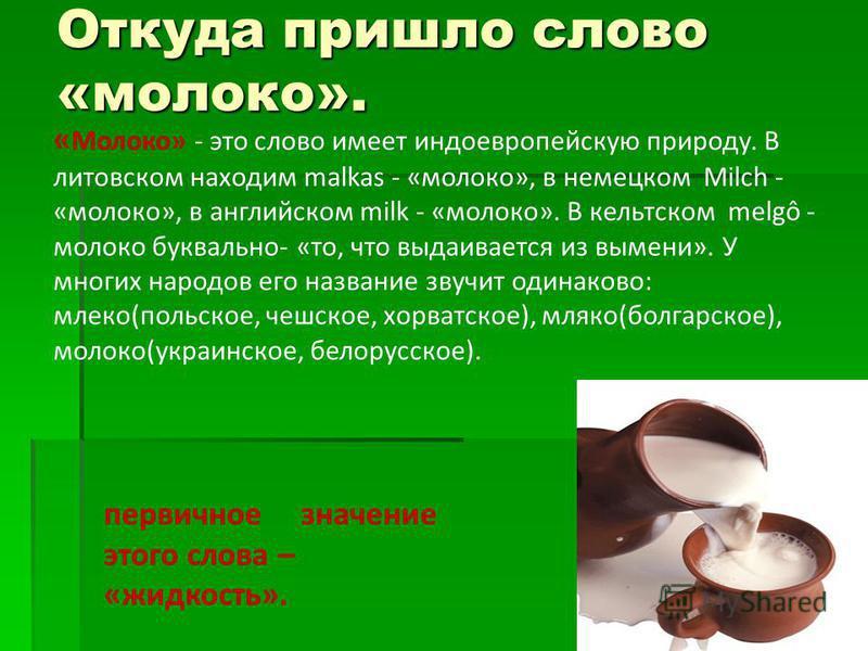 Откуда пришло слово «молоко». « Молоко» - это слово имеет индоевропейскую природу. В литовском находим malkas - «молоко», в немецком Milch - «молоко», в английском milk - «молоко». В кельтском melgô - молоко буквально- «то, что выдаивается из вымени»