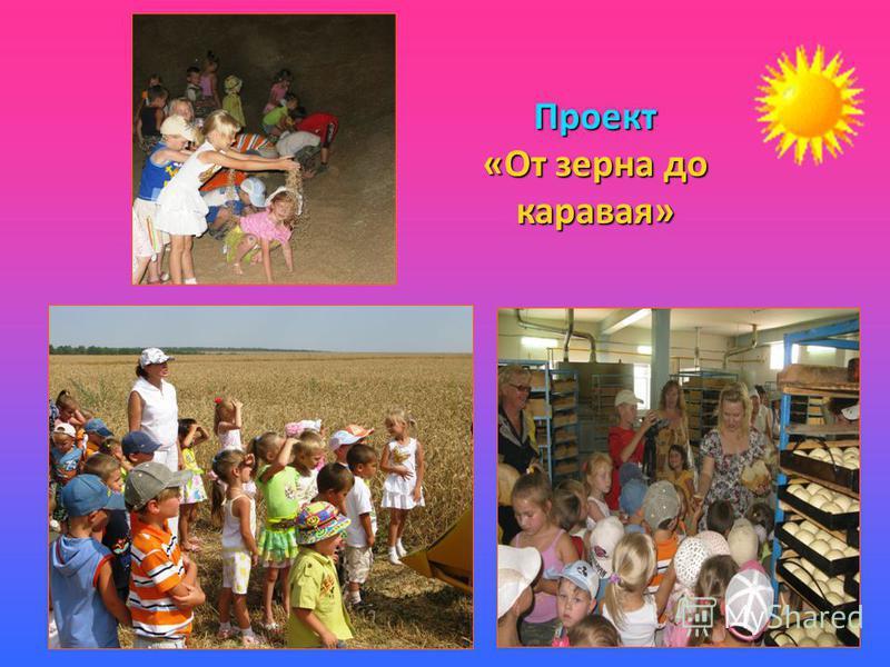 Проект «От зерна до каравая»