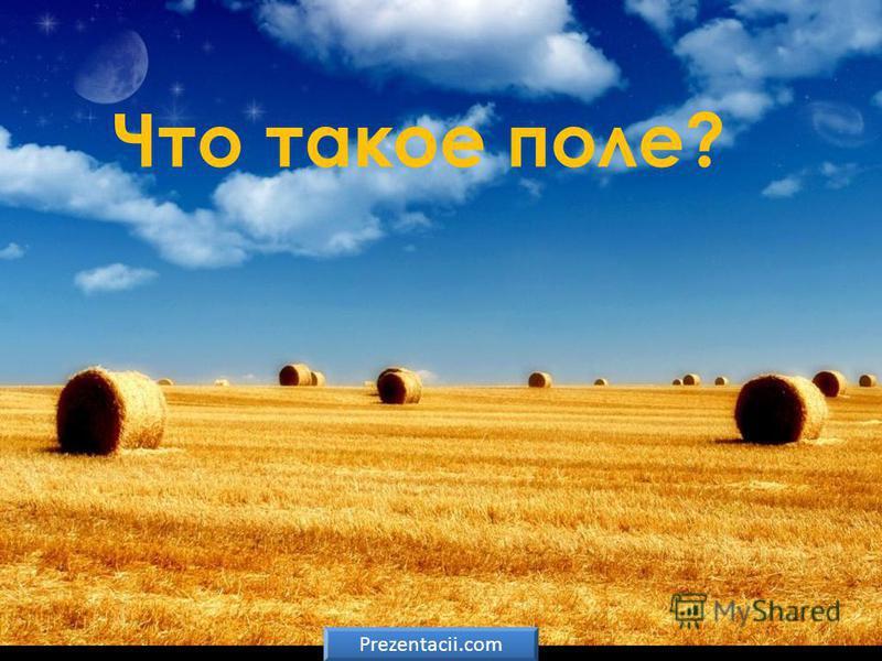Что такое поле? Prezentacii.com