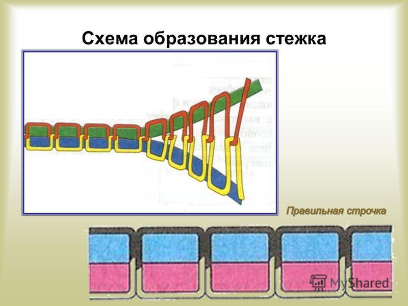 Схема образования стежка