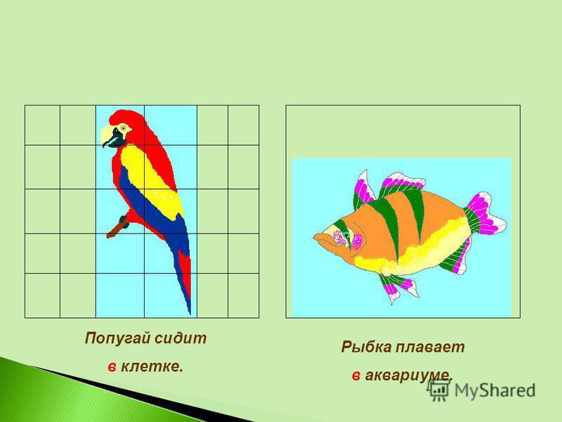 Попугай сидит в клетке. Рыбка плавает в аквариуме.