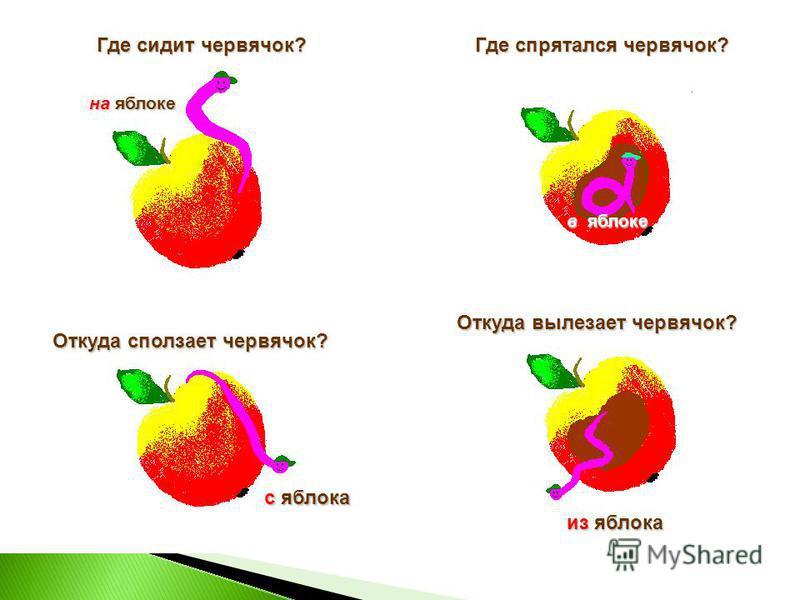 Где сидит червячок? Где спрятался червячок? Откуда сползает червячок? Откуда вылезает червячок? на яблоке в яблоке с яблока из яблока