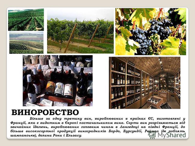 ВИНОРОБСТВО Більше за одну третину вин, вироблюваних в країнах ЄС, виготовлені у Франції, яка є видатним в Європі постачальником вина. Сорти вин розрізняються від звичайних їдалень, вироблюваних головним чином в Лангедоці на півдні Франції, до більше