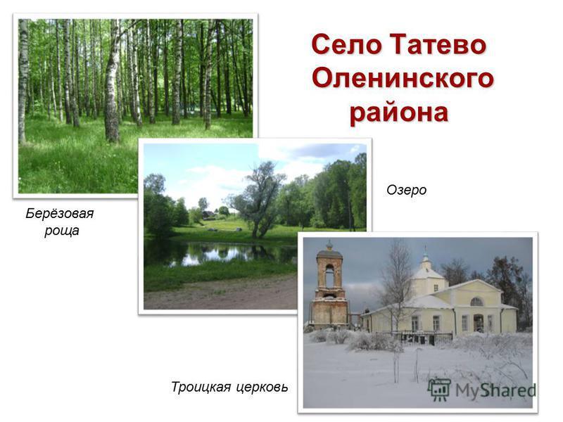 Село Татево Оленинского района Берёзовая роща Троицкая церковь Озеро